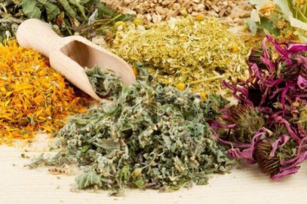 травы для ингаляции от кашля