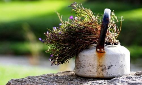 травяной сбор для ингаляций