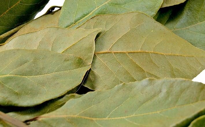 ингаляция с лавровым листом при гайморите